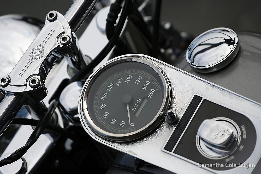 Harley Davidson by Samantha Cole-Surjan