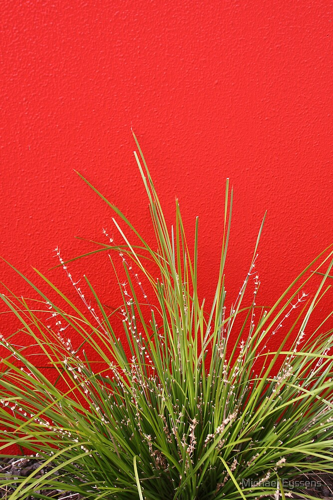 Red wall, little garden. by Michael Eyssens