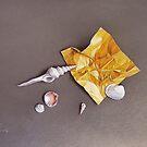 """Shells of the day"" by Elena Kolotusha"