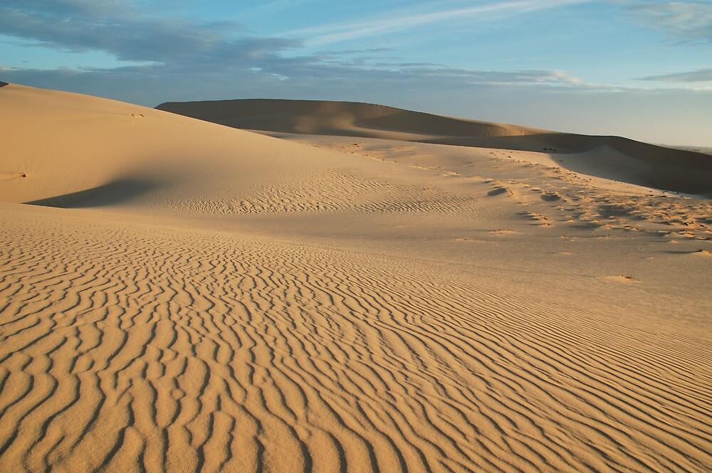White Dunes - Munei Vietnam by Chris Moysey