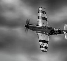 P51 Mustang by Stuart Wilson