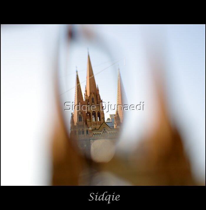 World Through My Eyes by Sidqie Djunaedi