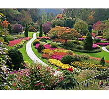Butchart Gardens  VICTORIA BC in the FALL ........ Photographic Print