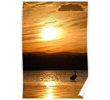 Sunset Lake Macquarie Poster