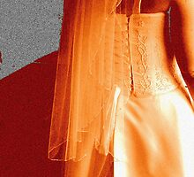 The Dress by Ann Williams-Fitzgerald