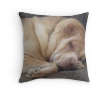 Sleepy Max Throw Pillow