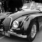 Jag 01 by Pierre