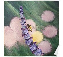 Bee gathering pollen on lavender Poster