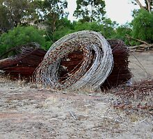 Wire by Kylie Paterson