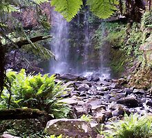 Paradise waterfall, photography Lissy by Lissy