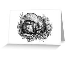 Baby hedgehog sleeping Greeting Card