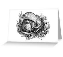Baby hedgehog sleeping Greeting Card