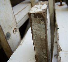 White Ladder 3 by janehf