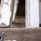 White Ladder 5 by janehf