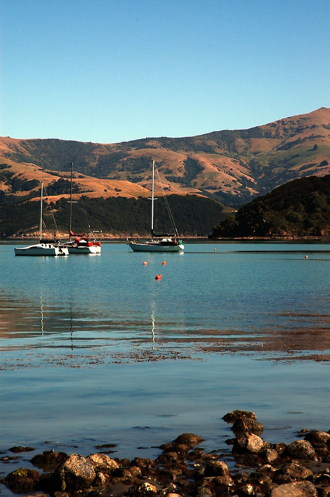 Akaroa Harbour NZ by IrishGill