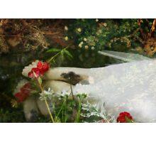 Ophelias Garden  - Rememberance Photographic Print