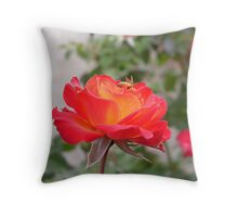 Mother Natures Beauty Throw Pillow