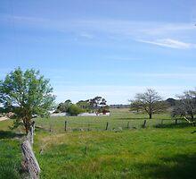 Countryside by omocha