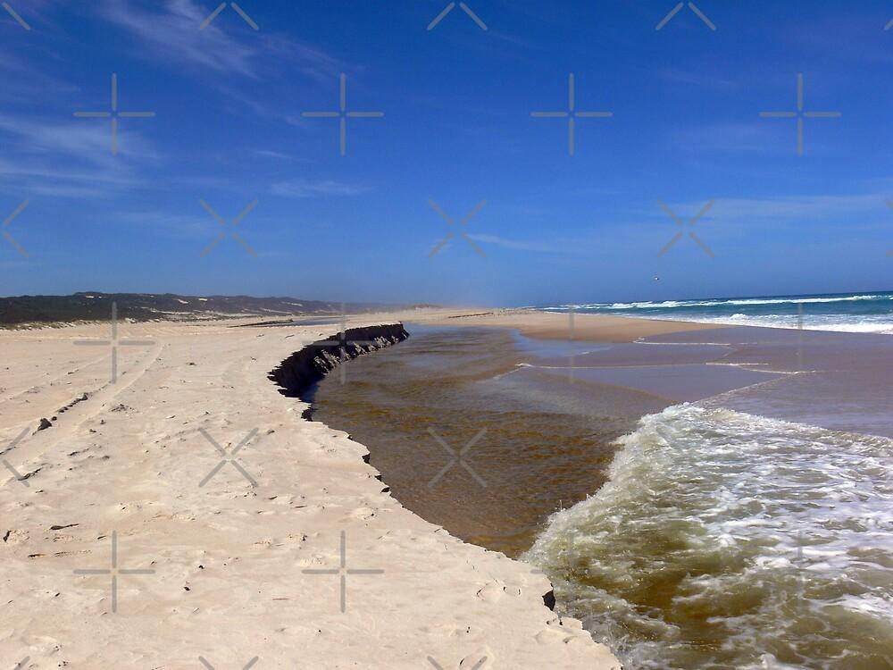 Coast line by Sandra Chung