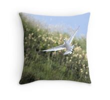Rissa tridactyla - Kittiwake Throw Pillow