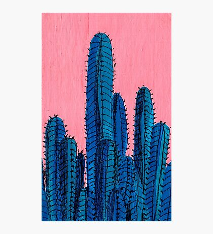 Blue Cactus Photographic Print