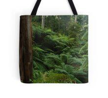 Ferns, Otway Ranges Tote Bag