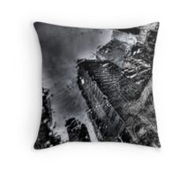 Rain on my Window Throw Pillow