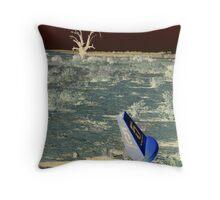 drought Australia - 2007 Throw Pillow