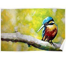 Kingfisher Painting Poster