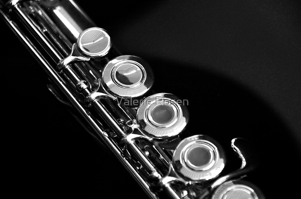 Flute (B&W) by Valerie Rosen