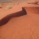 Sandhill,Madigan Line Simpson Desert by Joe Mortelliti