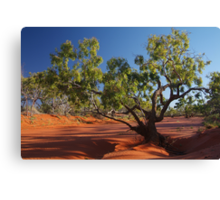 Morning, Hay River, River Bed, North Simpson Desert Canvas Print