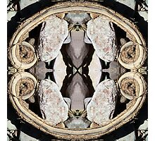 Creek Bed Kaleidoscope #1 Photographic Print