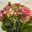 Say It With Pink Roses & Carnations by Sandra Cockayne