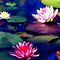 Lily Pond,  by Shanina Conway