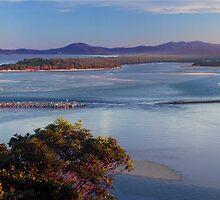 Head of the Nambucca River by Chris Livingstone