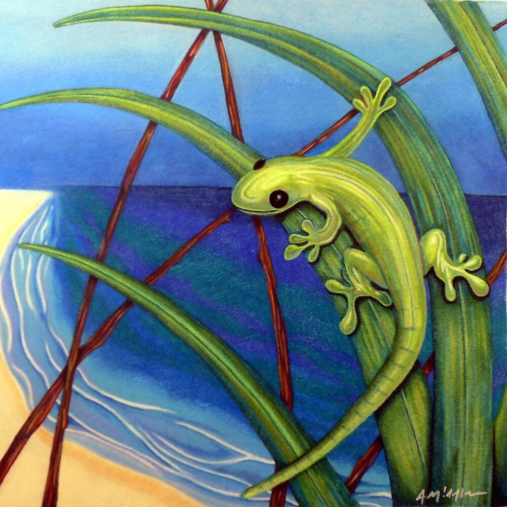 Gecko by Anthony Middleton