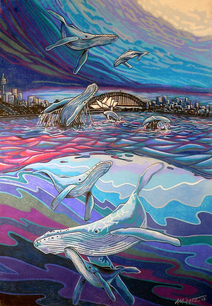 Humpback Whales by Anthony Middleton