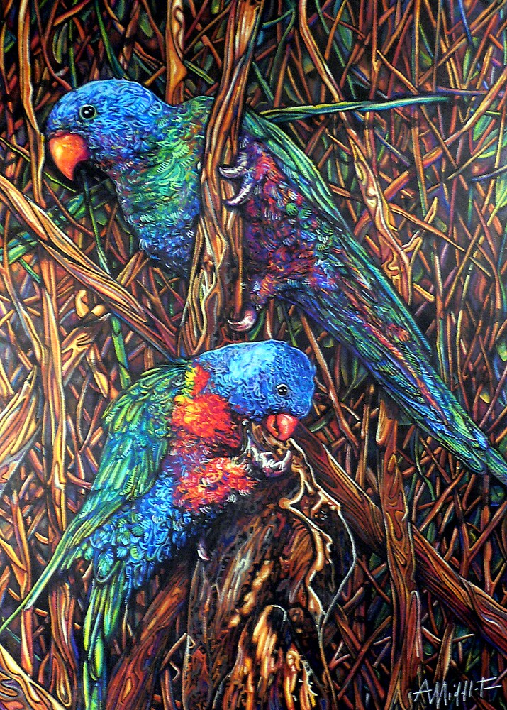 Lorikeets by Anthony Middleton