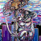 Possum & Koala by Anthony Middleton