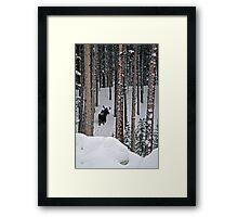 Snow Series - Backside Vasquez Framed Print