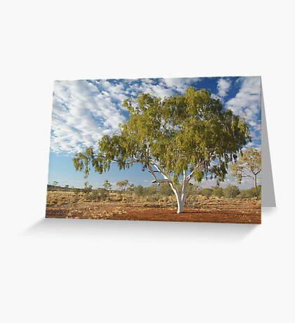 Ghost Gum,Batton Hill North Simpson Desert Greeting Card