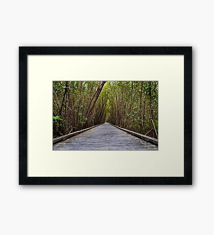 Not the Yellowbrick Road!  Framed Print
