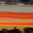 Red Sunrise,Batton Hill, North Simpson Desert by Joe Mortelliti