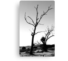Salted Earth Canvas Print