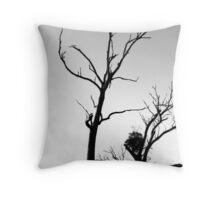 Salted Earth Throw Pillow