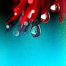 Drop See by Karen Cougan