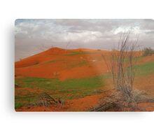 Pending Wild Flowers,North Simpson Desert Metal Print