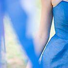 Bluebird by toolmantim