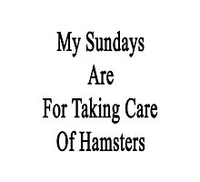 My Sundays Are For Taking Care Of Hamsters  Photographic Print